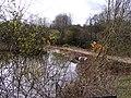 New Pool View - geograph.org.uk - 1225637.jpg