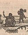 Nicolai Josephi Jacquin Selectarum stirpium Americanarum historia Seite I Ausschnitt.jpg