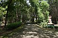 Nilambur Teak Museum 03956.JPG