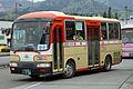 NishiTokyoBus C20351.JPG