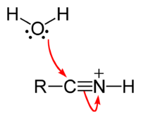 Nitrile-hydrolysis-step-2.png