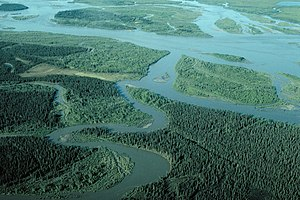 Noatak River - Near the river mouth south of Noatak