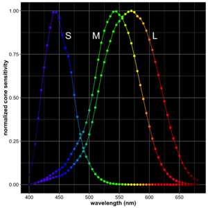 Primary color - Normalized cone spectral sensitivity curves