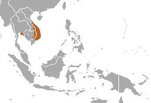 Northern Smooth-tailed Treeshrew area.png
