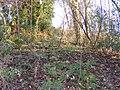 Northway Hillside - geograph.org.uk - 1076561.jpg