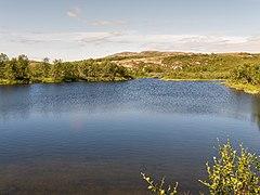Norwegen Finnmark River P1290519.jpg