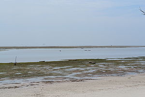 Nyali Beach from the Reef Hotel during low tide in Mombasa, Kenya 5.jpg