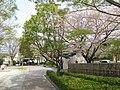 OKazaki-Aoi-Park-1.jpg