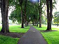 OSU Lower Campus Quad path - Corvallis Oregon.jpg