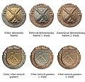 Odznaky vojakov vojnovej SR4 1939-45.jpg