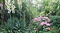Ogród - panoramio (1).jpg