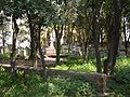 Old English Cemetery Livorno overview4.jpg