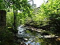 Old Mill Beck.jpg