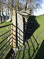 Old Stone Gatepost and Wall - geograph.org.uk - 354983.jpg