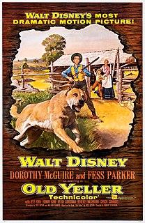 <i>Old Yeller</i> (film) 1957 film by Robert Stevenson
