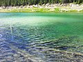 Olive Lake - panoramio (1).jpg