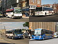 Olympia Trails buses Newark Airport Express 18522 ONE Bus 31082 Red & Tan 1512 Megabus 58525.jpg