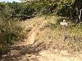On Ruth's Ridge - panoramio.jpg