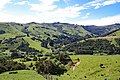 On the way to Akaroa 2 (31254197981).jpg