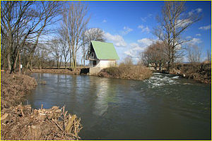 Oskava (river) - Oskava empties into Morava