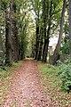 PL - Dukla - palace park - Kroton 002.JPG