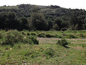 Paisaje en frente de la Coma d'en Vila,Sant Llorenç del Munt i l'Obac.jpg