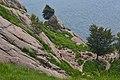 Palestra di roccia - Flickr - Irene Grassi (sun sand ^ sea).jpg