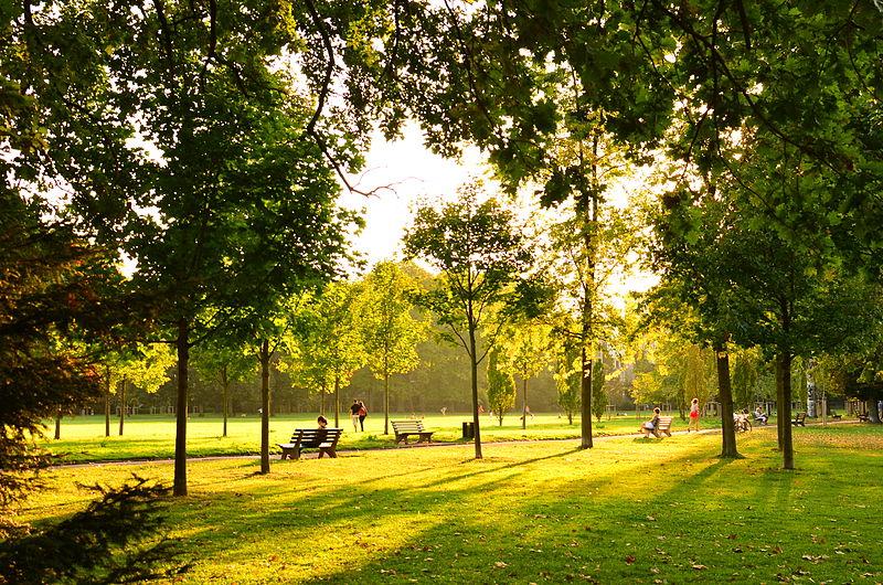 File:Parc de la Tête d'Or de Lyon - Vue des pelouses de la coupole.jpg