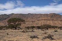 Parc national de Bouhedma.jpg