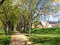 Park am Main, Offenbach-Bürgel2.JPG