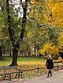 Park in Krakow (8125493475).jpg