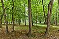 Park w zespole pałacowym Potockich, Krzeszowice, A-423 M 02.jpg