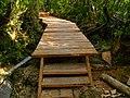 Parque Nacional Chiloé - camino de madera.jpg