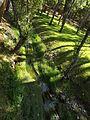 Parque Verde do Bonito - Ribeira - Pormenor.jpg