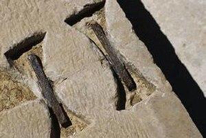 Pasargadae - Dovetail Staples from Pasargadae