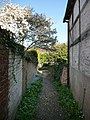 Path between houses Hambledon - geograph.org.uk - 1274805.jpg