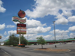 Byron, Georgia - Peach Shops Outlet Mall beside I-75 in Byron