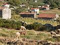 Pedras, Moinhos e Aromas de Santiago XXX (3684585057).jpg