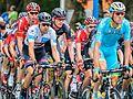 Peloton - Tour de France 2015 - Haastrecht - Zuid-Holland - Pays-Bas (19445067841).jpg