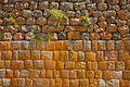 Peru - Sacred Valley & Incan Ruins 197 - Pisac (8114555563).jpg
