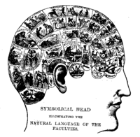 """A typical 18th century phrenology chart. Phrenologists claimed to predict personality traits from reading """"bumps"""" in the head. Phrenology was first considered a pseudoscience in 1843 and continues to be widely considered pseudoscience."""