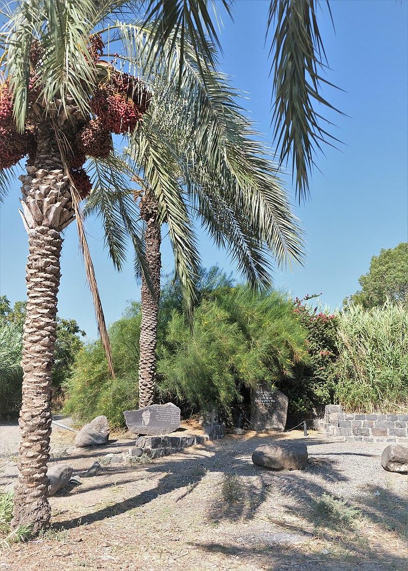 אנדרטה לזכר יצחק (גוליבר) בן מנחם, חוף כינר