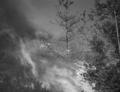 Požár Hůrek ve filmu Jan Cimbura.png