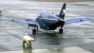 Wiley Post–Will Rogers Memorial Airport - Polar bear at Point Barrow airport, 2003