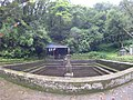 Pond at bagdwar.jpg