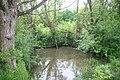 Pond in Oakley wood - geograph.org.uk - 557664.jpg