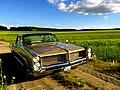 Pontiac Star Chief sedan 1964.jpg