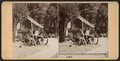 Porch, Washington Headquarters, Newburgh, from Robert N. Dennis collection of stereoscopic views.png