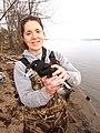 Port Louisa NWR Wildlife Biologist Jessica Bolser (6189544540).jpg