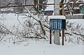 Post boxes on ulitsa Gora (Kazeevka, 2014) - Почтовые ящики на улице Гора (Казеевка, 2014) - panoramio.jpg